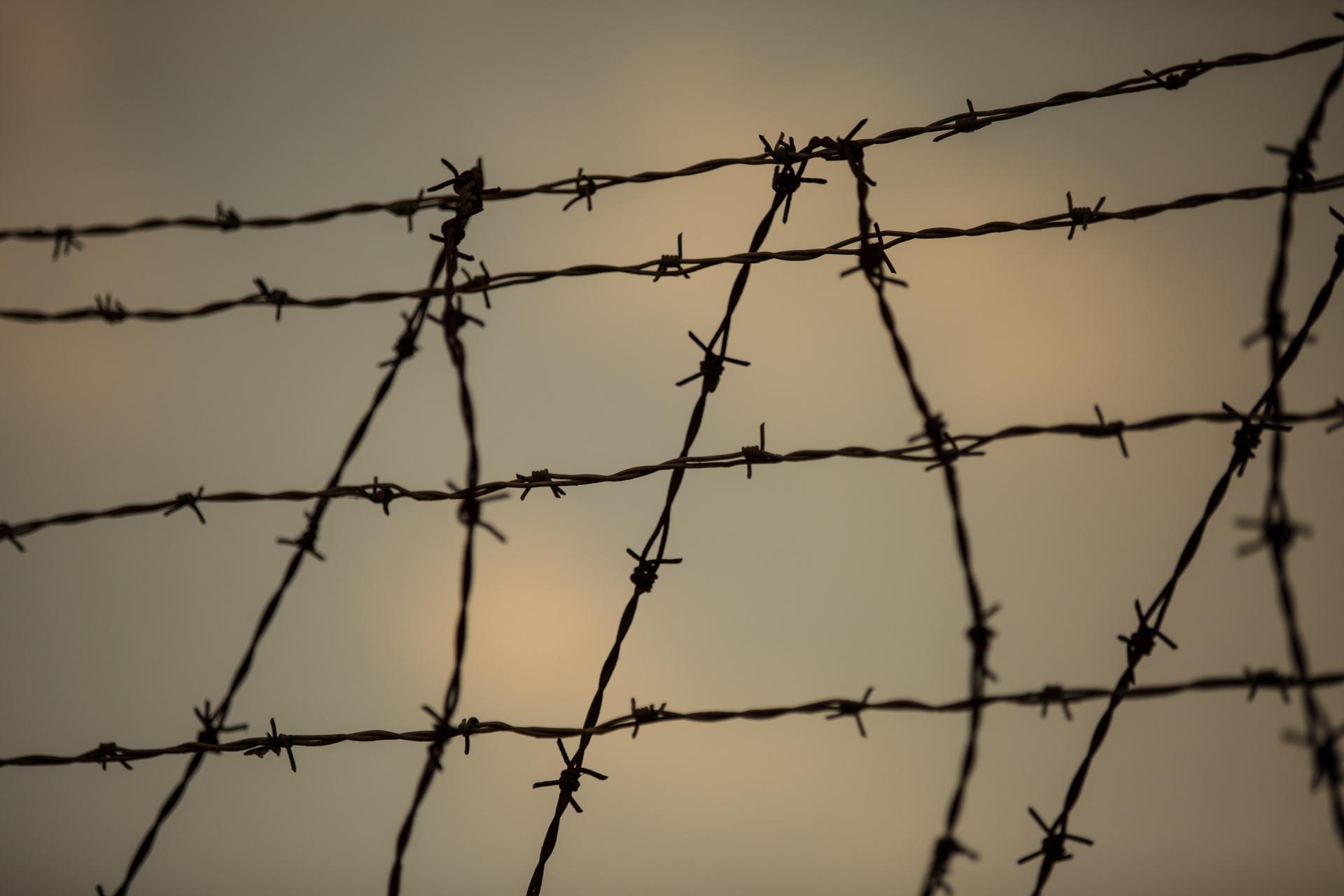 barbed-wire-1467825390ha4.jpg